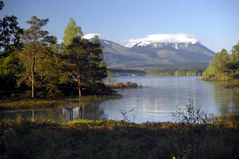 view across loch Arkaig to Ben Nevis