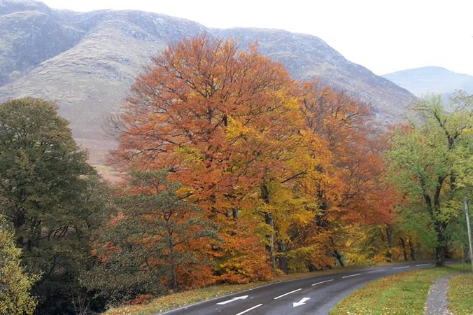 Road through Glen Nevis